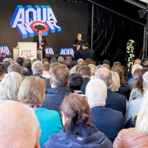 Aqua nor
